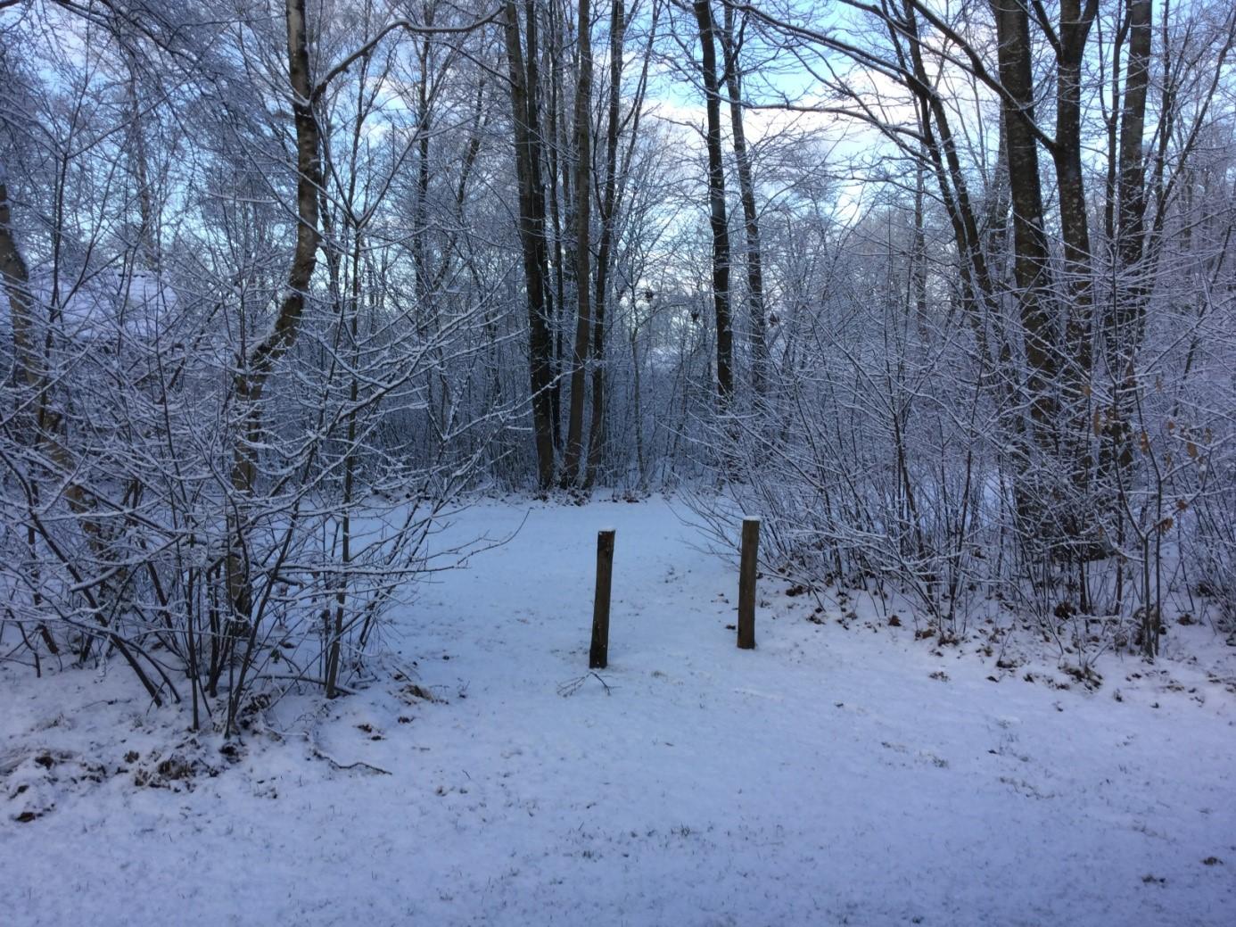 Sneeuw Echten